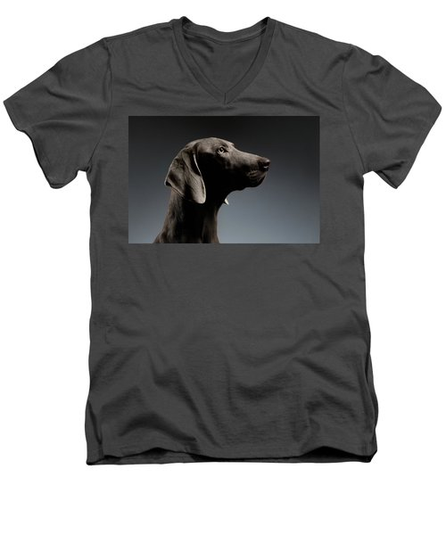 Men's V-Neck T-Shirt featuring the photograph Close-up Portrait Weimaraner Dog In Profile View On White Gradient by Sergey Taran