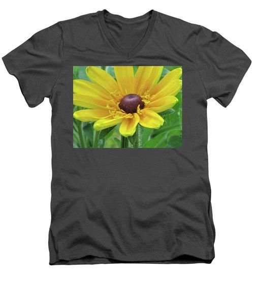 Close Up Summer Daisy Men's V-Neck T-Shirt by Michele Wilson