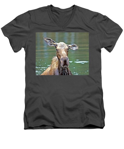 Close Wet Moose Men's V-Neck T-Shirt