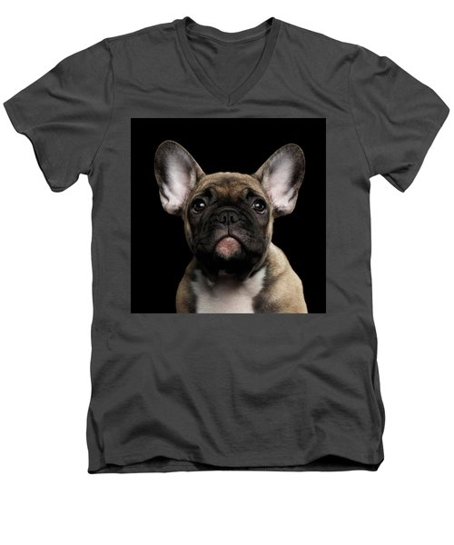 Closeup Portrait French Bulldog Puppy, Cute Looking In Camera Men's V-Neck T-Shirt by Sergey Taran