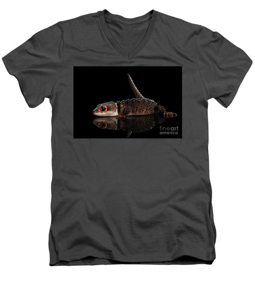 Men's V-Neck T-Shirt featuring the photograph Closeup Red-eyed Crocodile Skink, Tribolonotus Gracilis, Isolated On Black Background by Sergey Taran