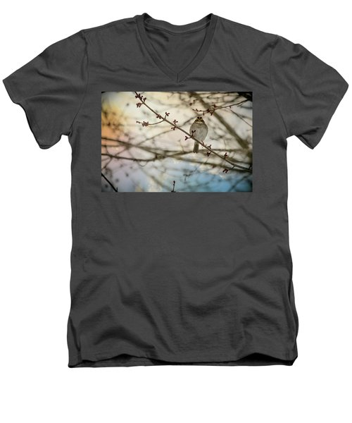 Men's V-Neck T-Shirt featuring the photograph Cloudy Finch by Trish Tritz
