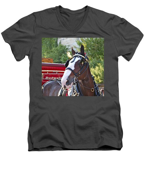 Men's V-Neck T-Shirt featuring the photograph Clydesdale At Esp by Alice Gipson