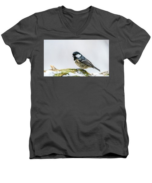 Men's V-Neck T-Shirt featuring the photograph Coal Tit's Profile by Torbjorn Swenelius