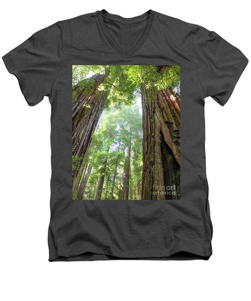 Coastal Redwoods  Men's V-Neck T-Shirt