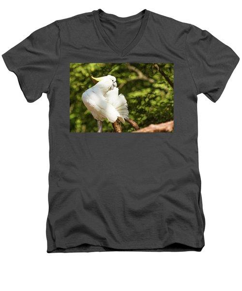 Cockatoo Preaning Men's V-Neck T-Shirt