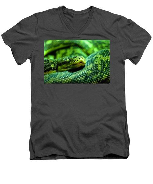 Coiled Calm Men's V-Neck T-Shirt