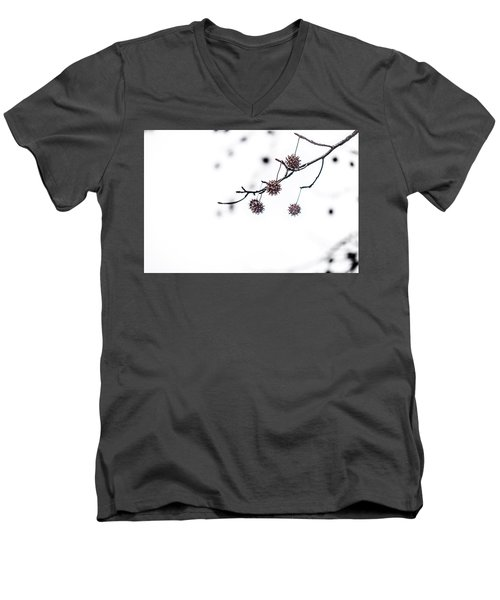 Cold And Pointy Men's V-Neck T-Shirt by Wade Brooks
