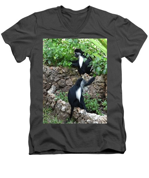 Colobus Monkey Eating Leaves For Breakfast Men's V-Neck T-Shirt