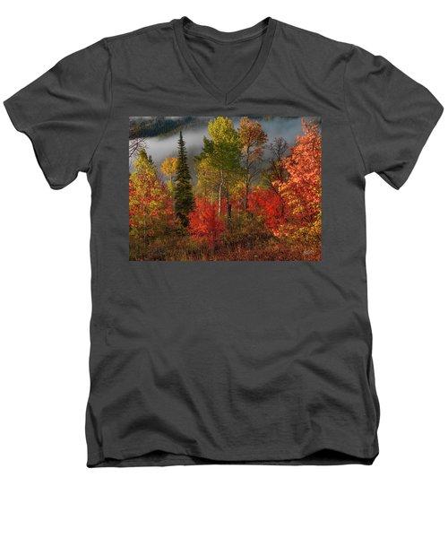Color And Light Men's V-Neck T-Shirt