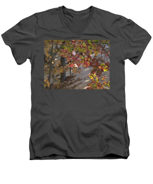 Men's V-Neck T-Shirt featuring the photograph Color In The Dunes by Tara Lynn