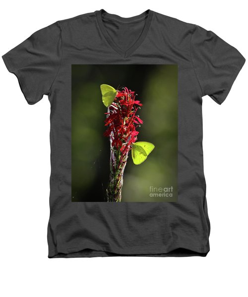 Men's V-Neck T-Shirt featuring the photograph Color On Citico by Douglas Stucky
