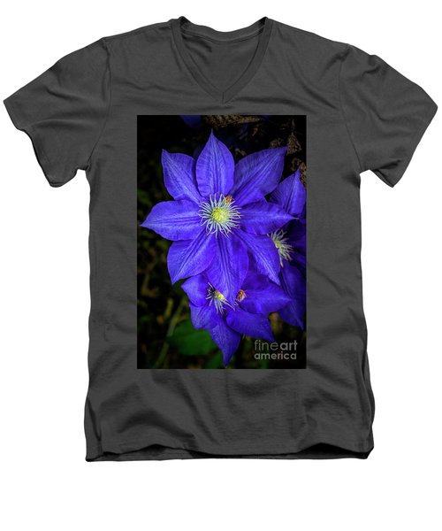 Color Me Purple Men's V-Neck T-Shirt