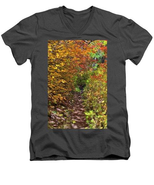 Cascade Mountain Range Color Vortex Men's V-Neck T-Shirt