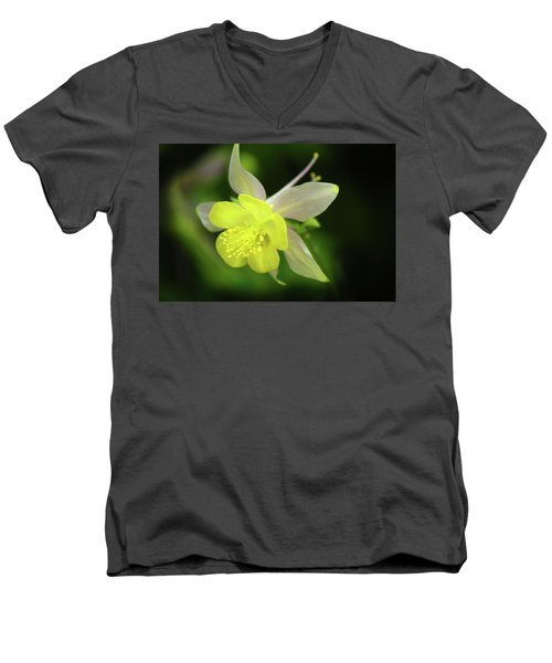 Colorado Columbine Men's V-Neck T-Shirt