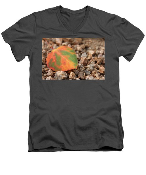 Men's V-Neck T-Shirt featuring the photograph Colorado Fall Colors by Christin Brodie