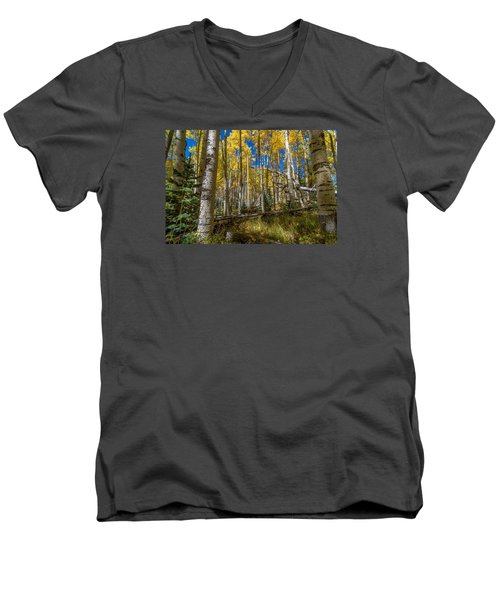 Colorado Fall Hike In The Aspens Men's V-Neck T-Shirt