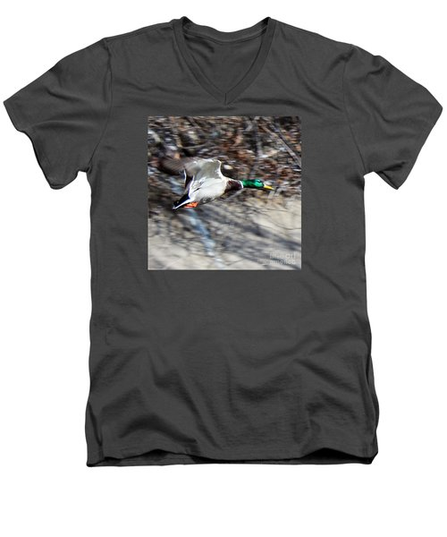 Colorado Mallard In Flight Men's V-Neck T-Shirt
