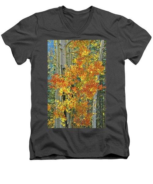 Colorful Aspen Along Million Dollar Highway Men's V-Neck T-Shirt