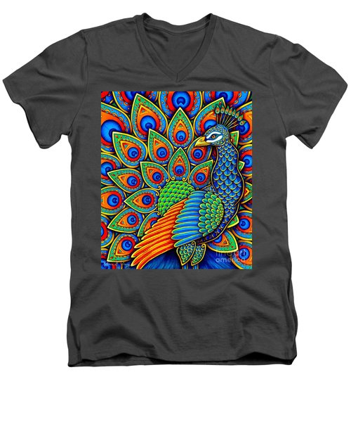 Colorful Paisley Peacock Men's V-Neck T-Shirt