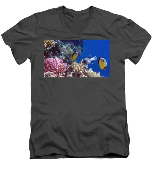 Colorful Red Sea Fish And Corals Men's V-Neck T-Shirt