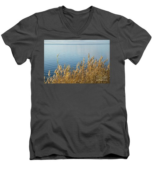 Colorful Reeds Men's V-Neck T-Shirt