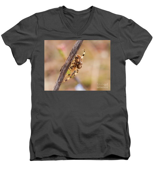 Colorful Spider Hanging From The Stick  Men's V-Neck T-Shirt
