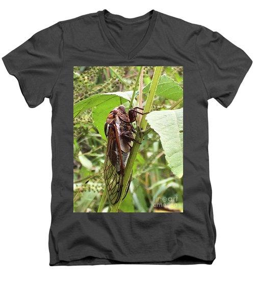 Colorful Summer Cicada Men's V-Neck T-Shirt