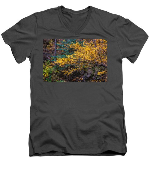 Colorful Trees Along The Creek Bank Men's V-Neck T-Shirt