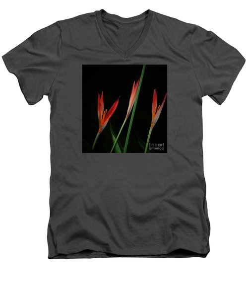 Men's V-Neck T-Shirt featuring the photograph Colorful Trio by Pamela Blizzard