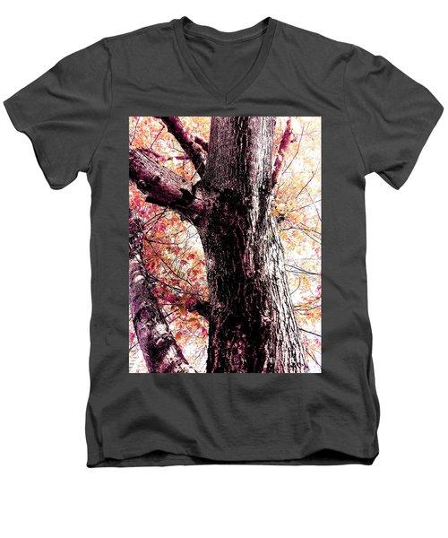 Colors And Texture  Men's V-Neck T-Shirt