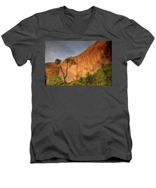Colors Of Bliss Men's V-Neck T-Shirt
