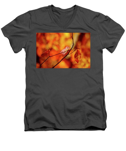 Men's V-Neck T-Shirt featuring the photograph Colors by Robert Geary