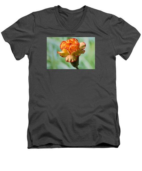 Colour Burst Men's V-Neck T-Shirt by Terence Davis