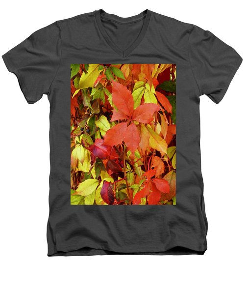 Colours Of Autumn Men's V-Neck T-Shirt by Brian Chase