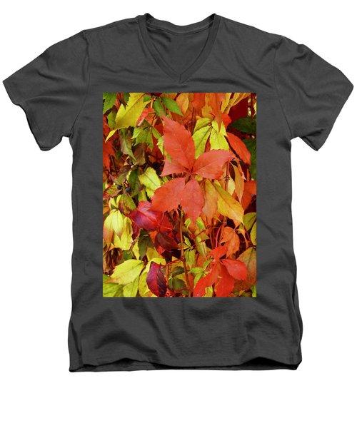 Colours Of Autumn Men's V-Neck T-Shirt