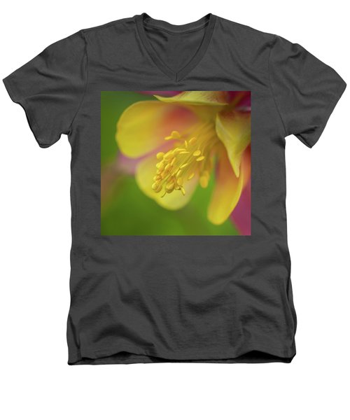 Men's V-Neck T-Shirt featuring the photograph Columbine by Greg Nyquist