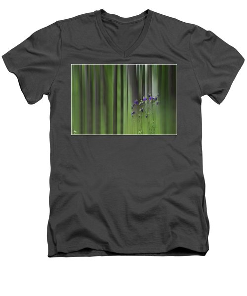 Columbine Spring Men's V-Neck T-Shirt