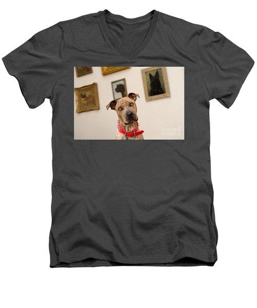 Commodor Men's V-Neck T-Shirt