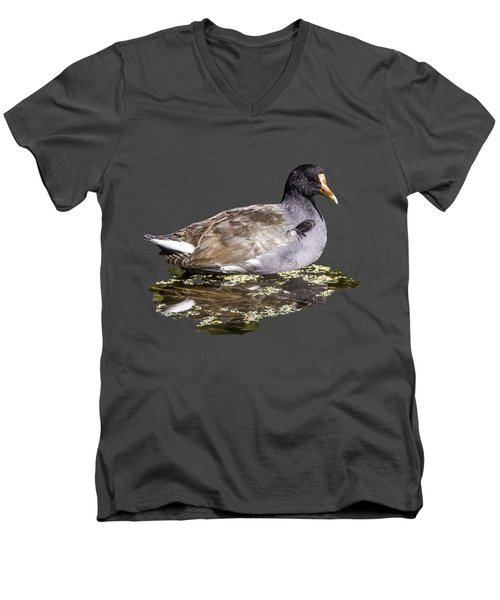 Common Gallinule Transparency Men's V-Neck T-Shirt