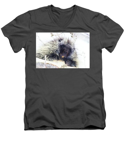 Common Porcupine Men's V-Neck T-Shirt