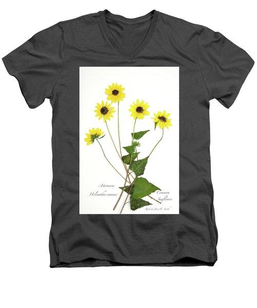 Common Sunflower Men's V-Neck T-Shirt