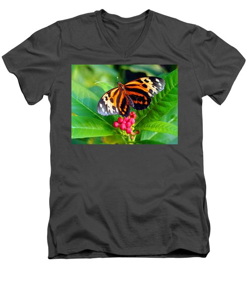 Common Tiger Glassywing Butterfly Men's V-Neck T-Shirt