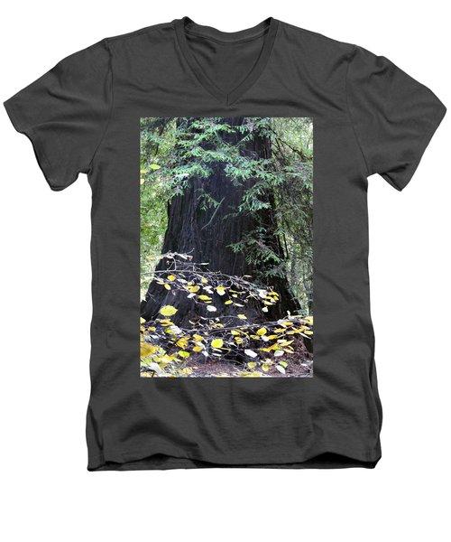Complementary  Men's V-Neck T-Shirt