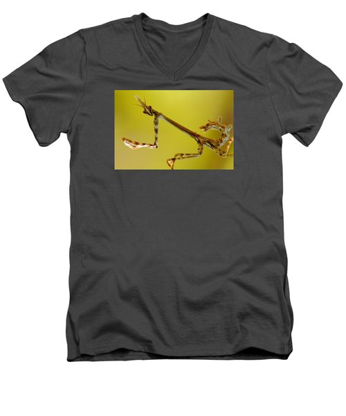 Men's V-Neck T-Shirt featuring the photograph Cone Head Mantis by Richard Patmore