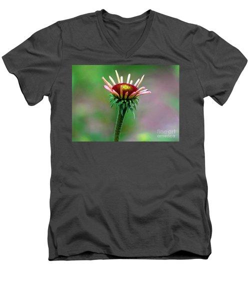 Coneflower Bloom Men's V-Neck T-Shirt