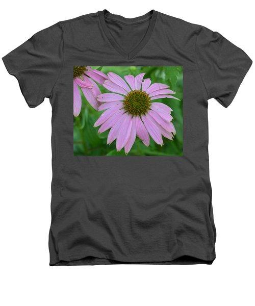 Coneflower Men's V-Neck T-Shirt