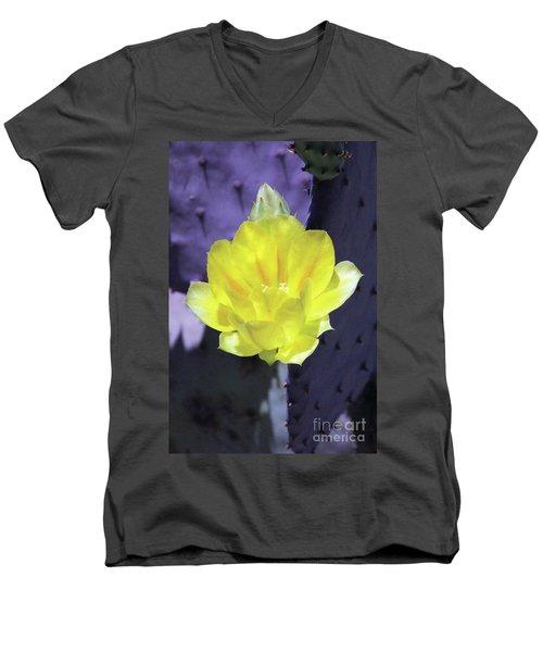 Contrast Men's V-Neck T-Shirt by Alycia Christine