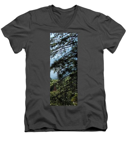 4 Of 4 Controlled Burn Of Yosemite Section Men's V-Neck T-Shirt