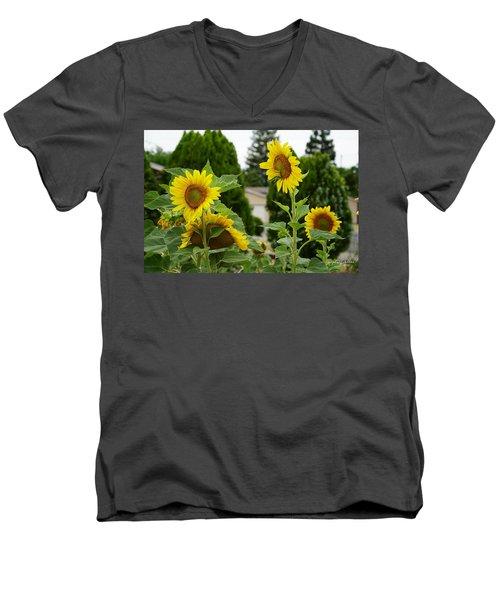 Conversing Sunflowers Men's V-Neck T-Shirt
